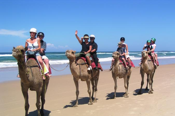 Agadir 2 hour camel ride in agadir 185074