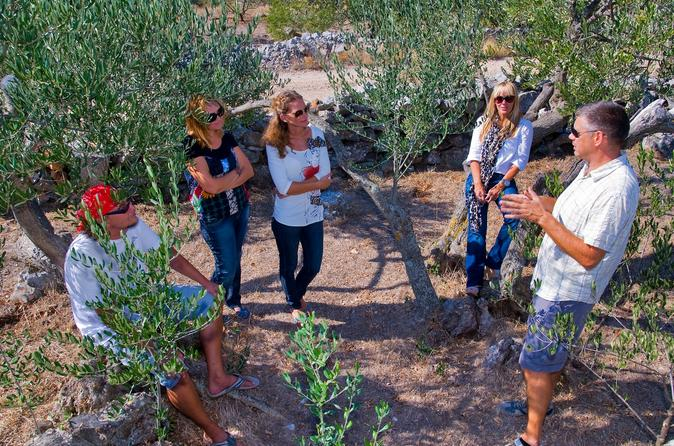 Olive Oil Tour of Solta Island