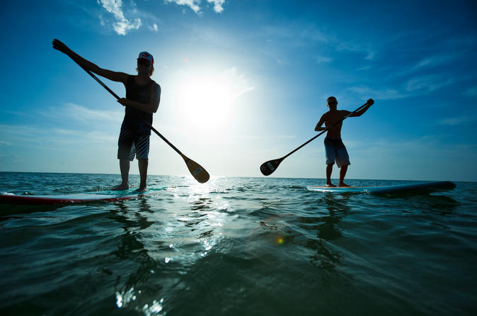 Paddle board rental in scarborough in scarborough 323640