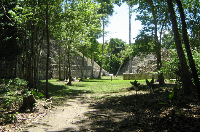 Full-Day Exploration of the Caracol Maya Temple