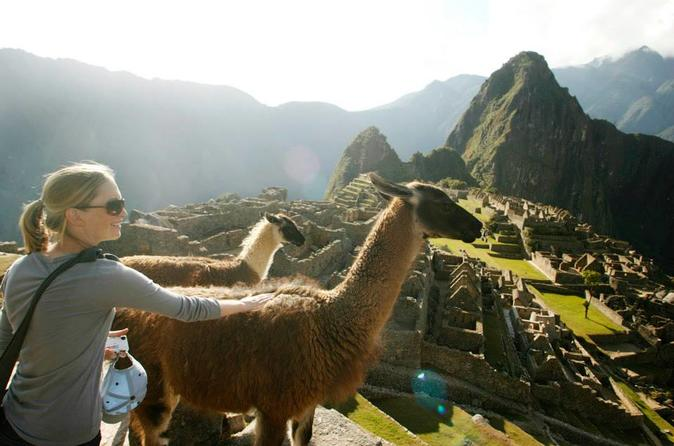 Machu Picchu Standard Entrance Ticket - Cusco