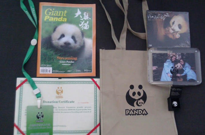 Dujiangyan panda base with optional volunteering and photo taking in chengdu 261324