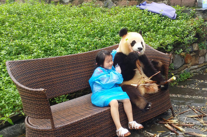 Dujiangyan Panda Base with Optional Volunteering and Photo-taking with Panda
