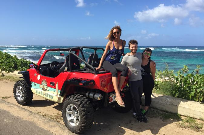 North Shore Oahu Dune Buggy Driving Full Day Tour