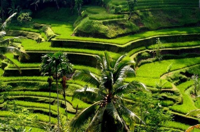 Excursão turística tradicional de dia inteiro a vilas em Bali com almoço