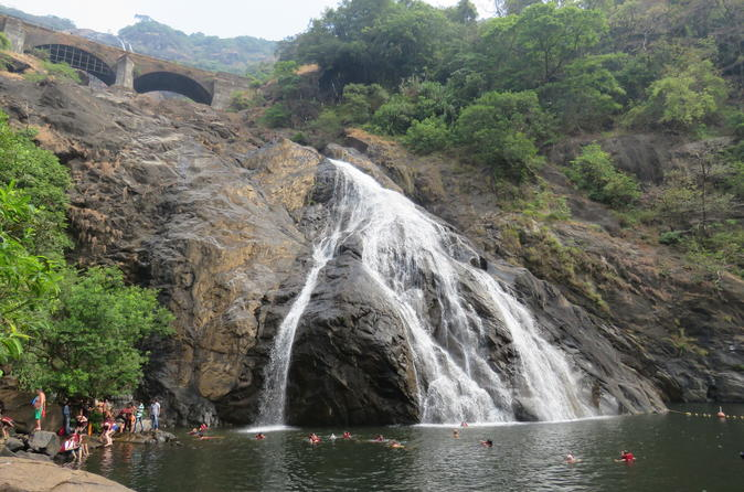 Full-Day Private Tour to Dudhsagar Falls and Spice Plantation From Goa