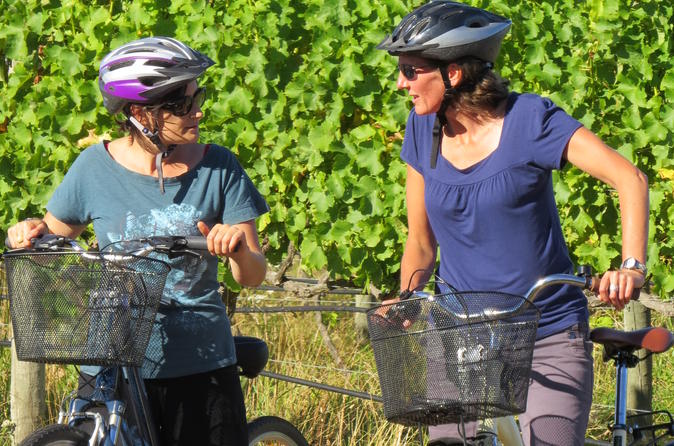 Full day marlborough wine region guided bike tour in blenheim 234029