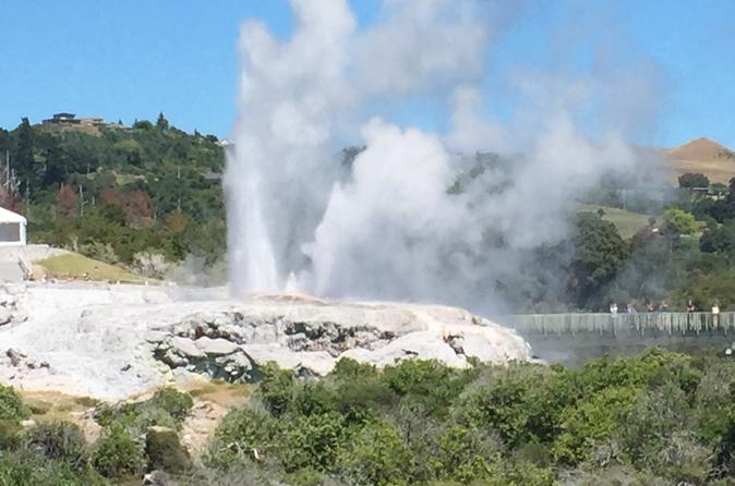 Shore Excursion: Fully Guided Rotorua Sightseeing Tour Including Tauranga and Mt Maunganui