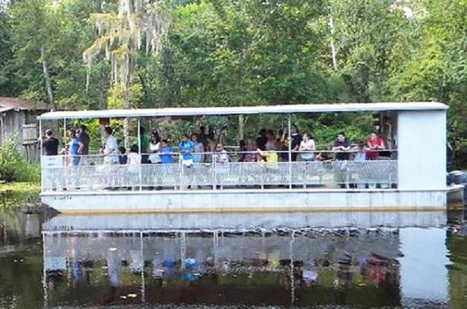 Three hour City Tour and Swamp Boat Tour