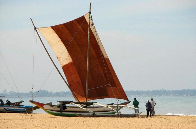 Lagoon escapes negombo day trip in negombo 186110