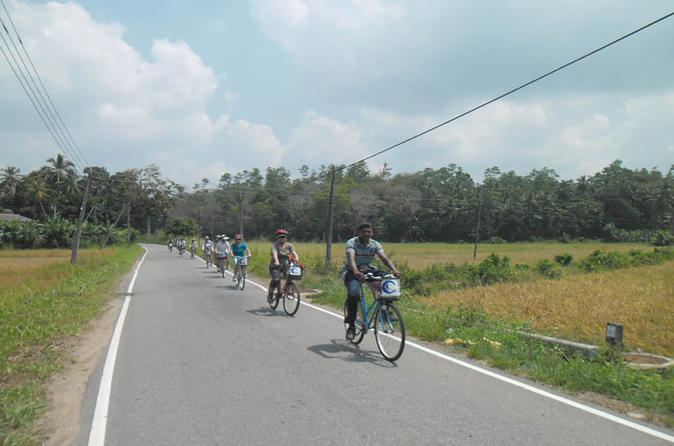 Half day lagoon and village cycling tour in galle in galle 188601