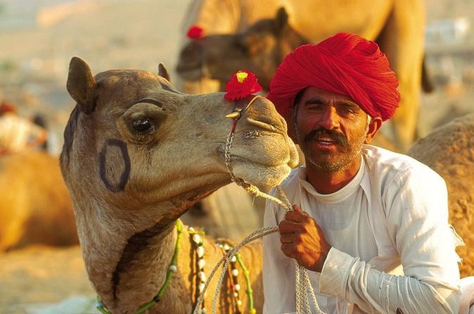 Day Trip to Pushkar from Jaipur