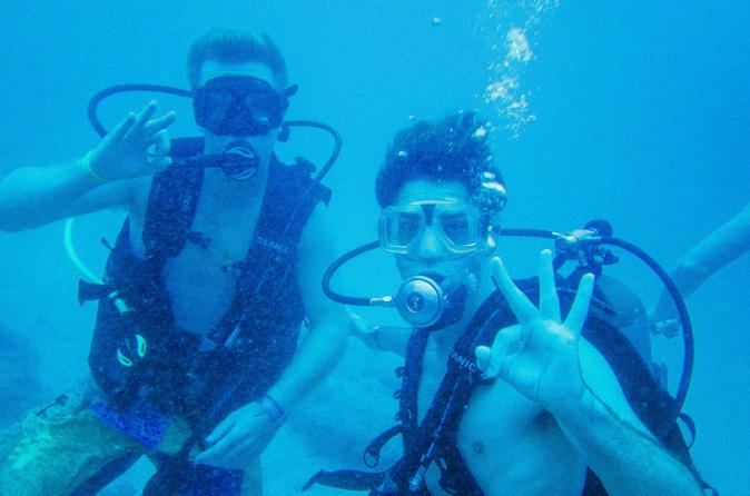 Padi discover scuba diving in sayulita in sayulita 498358