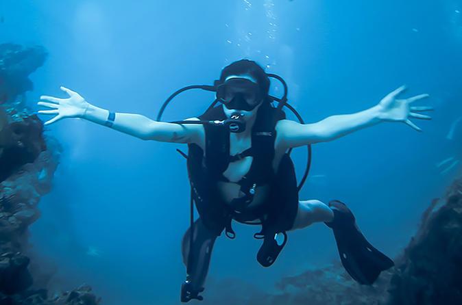 Scuba dive tour in marietas island from sayulita in sayulita 498361