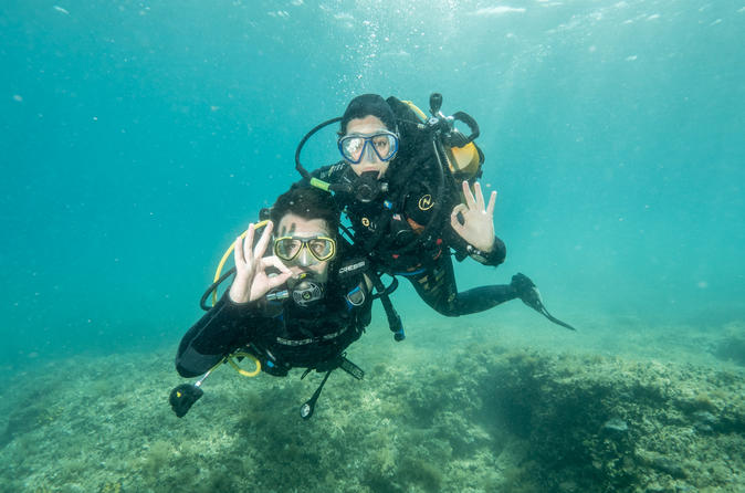 Padi open water diver course in pula 226402