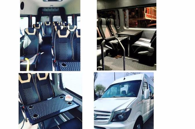 Istanbul Ataturk Airport Luxury Private Arrivals Transfer With VIP Mercedes Sprinter