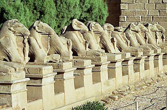 Excursão particular de 7 Noites no Cairo, Gizé e Luxor incluindo cruzeiro no Nilo e voos domésticos saindo do Cairo