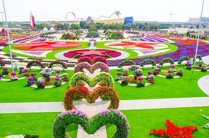 half day dubai butterfly garden and miracle garden tour triphobo