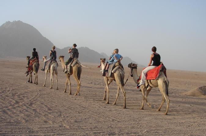 Sharm Mega Safari