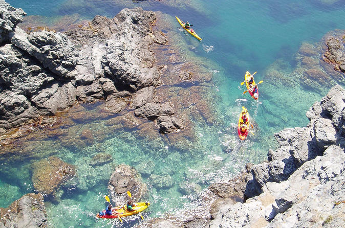 Family kayaking in llanca costa brava in llan 190022