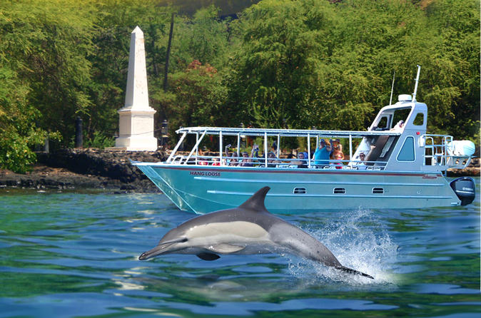 Combo kealakekua bay and wild dolphin snorkel with lunch in kailua kona 186477