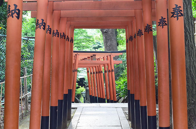 Private Tour - Experience Japanese Culture at Temples and Shrines in Ueno