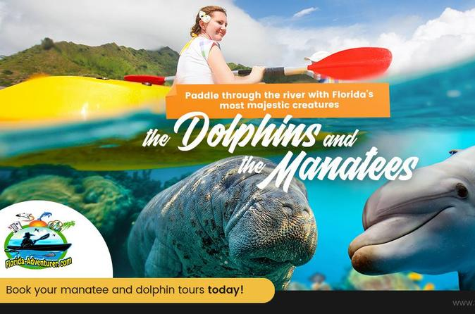 Manatee and Dolphin tour