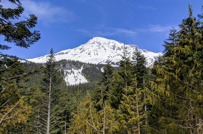 Mount Rainier National Park - Luxury Small Group Day Tour with Lunch