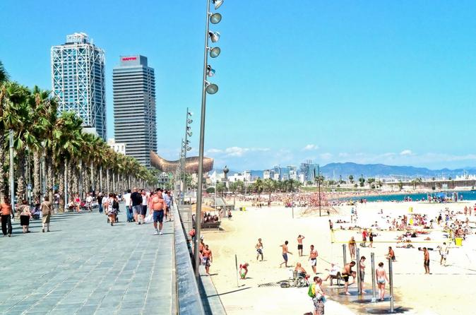 Private Full Day Walking City Tour in Barcelona