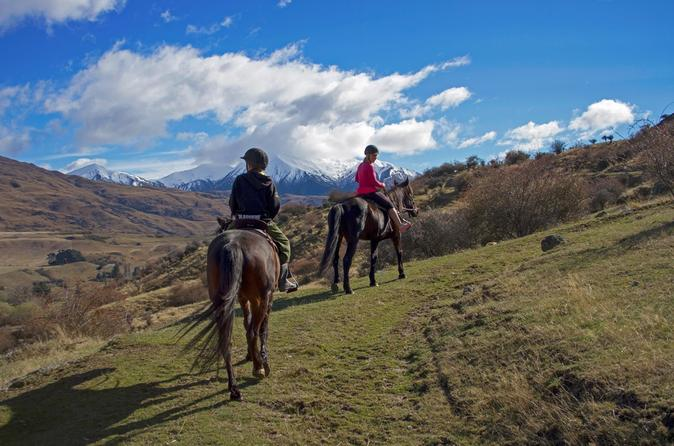 Small group gold discovery horse riding in cardrona valley in wanaka 219384