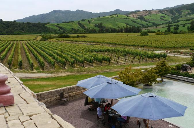 COLCHAGUA AND ITS WINES