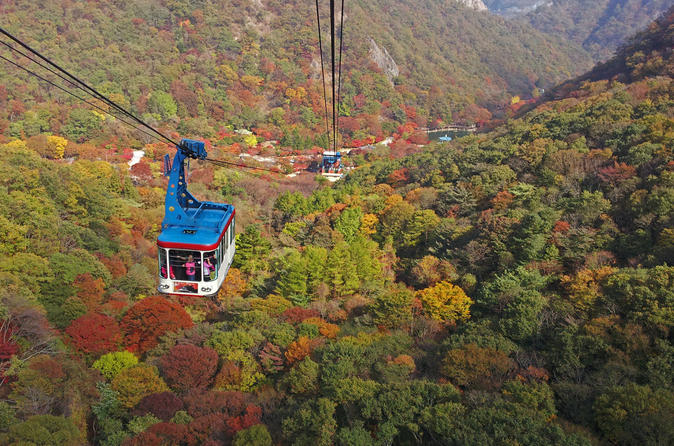Private Maple Tree and Mt. Naejang Day Trip from Seoul""