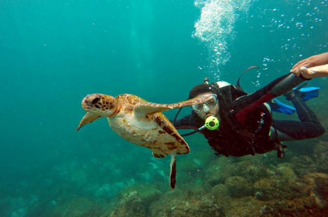 Excursão privada: excursão de um dia para Arraial do Cabo saindo do Rio de Janeiro