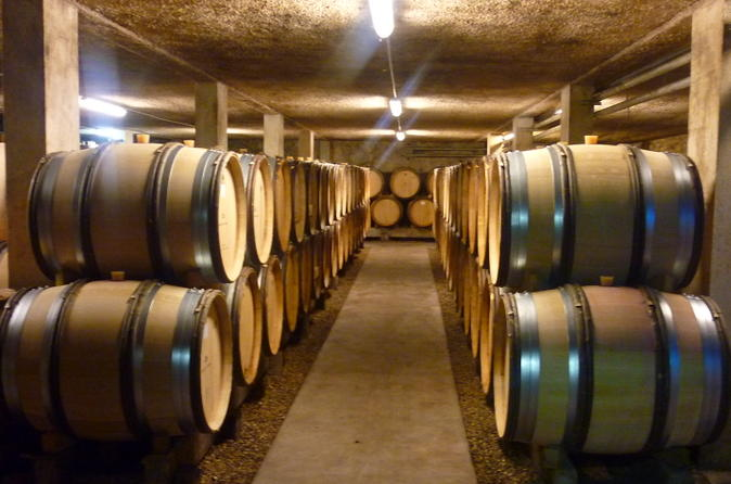 1 hour visit and tasting in beaune in beaune 189572