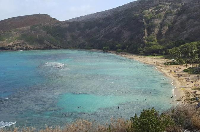 Kealoha Tours Shuttle Service to Hanuama Bay