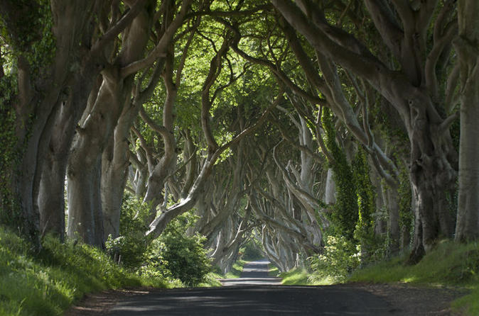 6-Day All Ireland Tour from Dublin