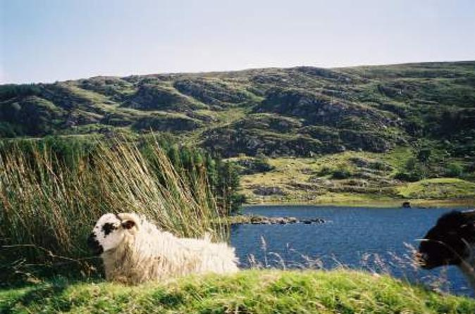 County Kerry Day Trip from Dublin