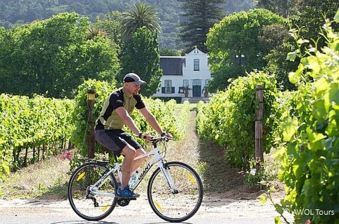Privéfietstocht door Constantia Winelands