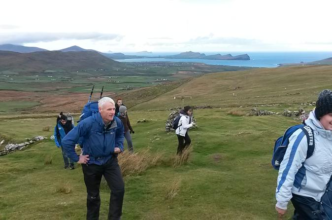 Excursão diurna a Dingle e Slea Head saindo de Killarney