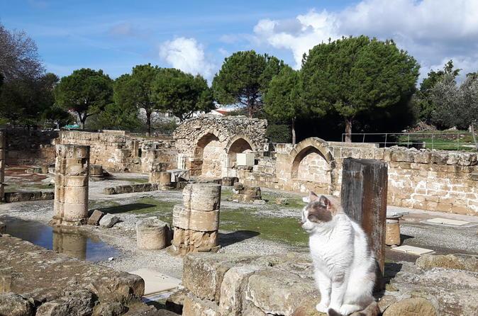 Ancient City  Of  PAPHOS