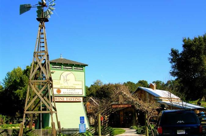 Hop on hop off wine tasting tour from cambria and san simeon in cambria 218748
