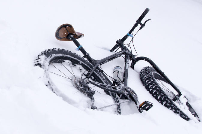 Fat bike tours in fort collins 270144