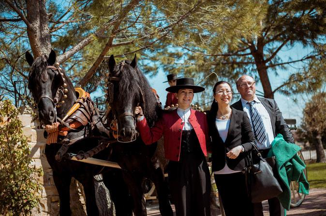 Spain in a Day - Cervantes, Alcalá de Henares - Gastronomy&Shows - ALL INCLUSIVE