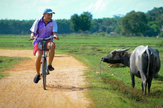 Koh Yao Noi mit Radtour & Mittagessen