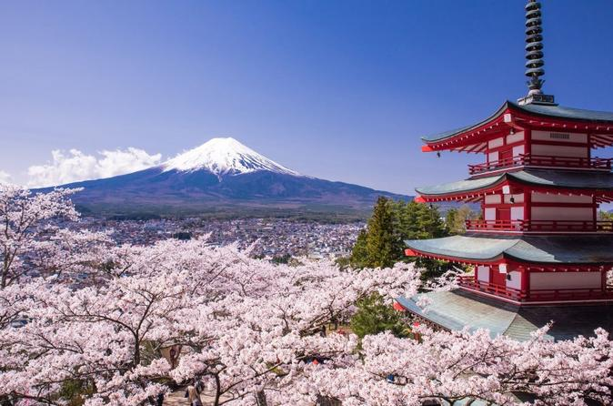 Cherry Blossom Festival with Visit to Five-Story Pagoda,Kawaguchiko from Tokyo