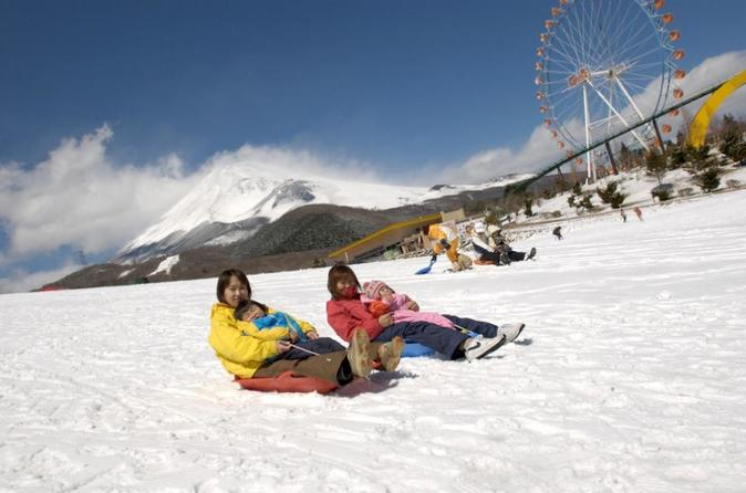 Fuji  2nd Station  Sledding ,Hakone Cruise, and Gotemba Outlet  with Lunch