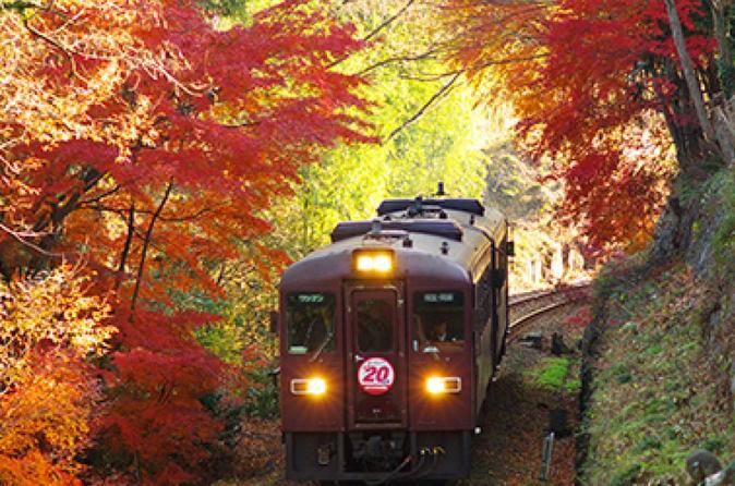 Watarase Keikoku Railway, Takatsudokyo Gorge , Illumination at Ashikaga Flower Park