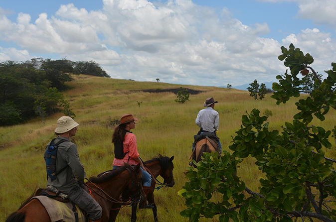 7-Day Guyana Wild Ranch Adventure from Lethem