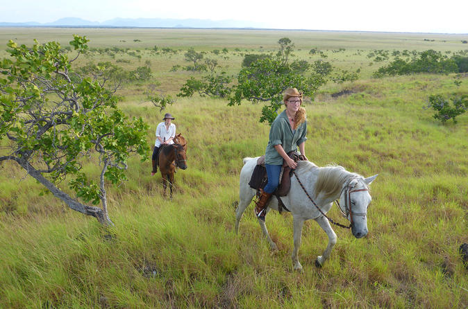 Horseback Riding in Lethem Savanna