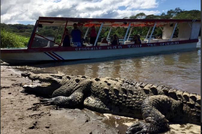 Crocodile Man Tour from Jaco